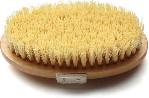 dry skin brushing for health
